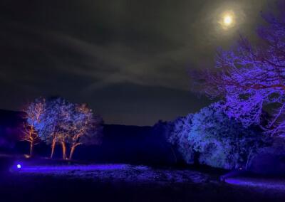 rheinleuchten-2019-11-am-mythischen-fels